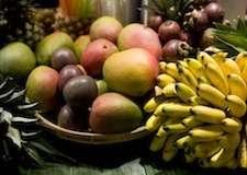 Thumb_Tropisch_Fruit_225x160
